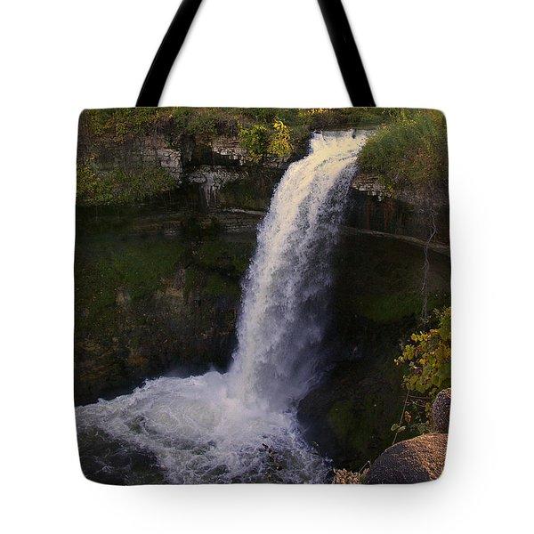 Fall At Minnehaha Falls Tote Bag by Tom Reynen