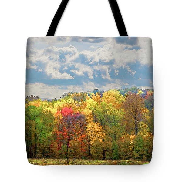 Tote Bag featuring the photograph Fall At Shaw by David Coblitz