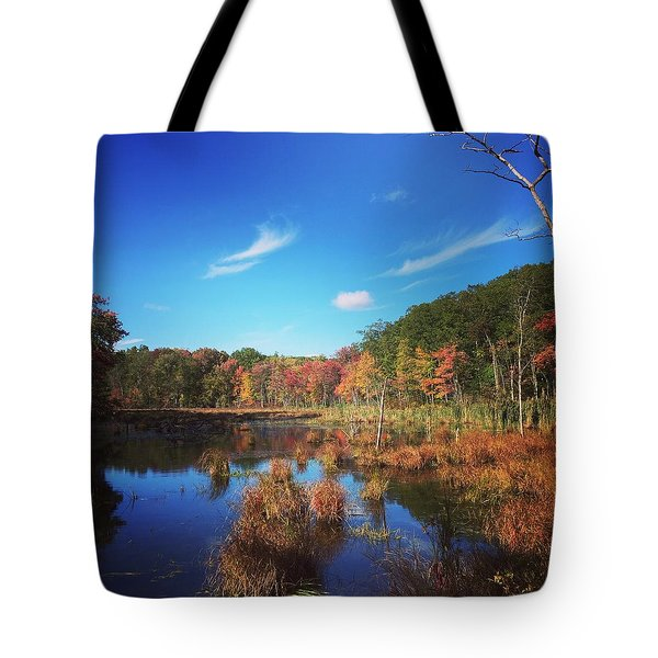 Fall At The Pond Tote Bag