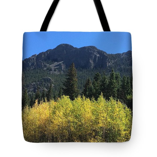 Fall At Twin Sisters Tote Bag