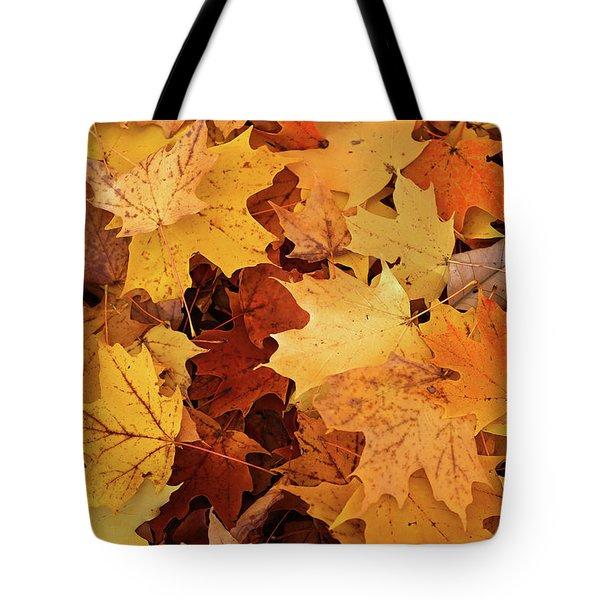 Fall Carpet 10 Tote Bag