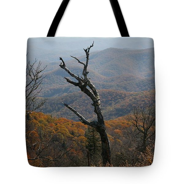 Fall Tote Bag by Cathy Harper