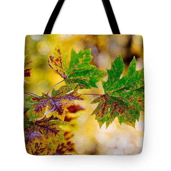 Tote Bag featuring the photograph Fall Changes Everything by MaryJane Armstrong