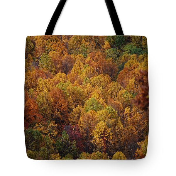 Tote Bag featuring the photograph Fall Cluster by Eric Liller