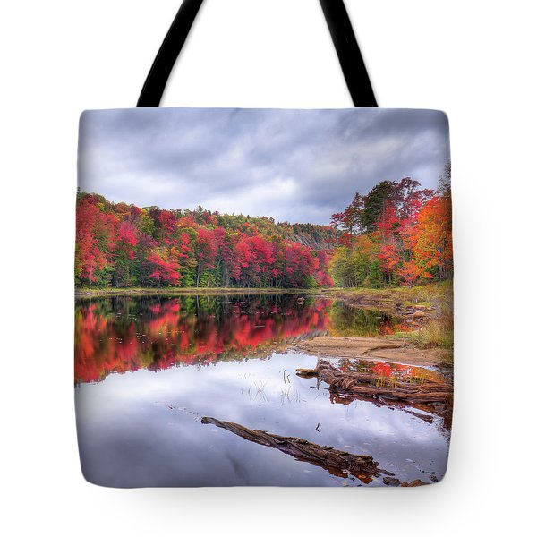 Tote Bag featuring the photograph Fall Color At The Pond by David Patterson