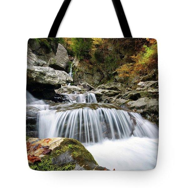 Fall Color Bash Tote Bag