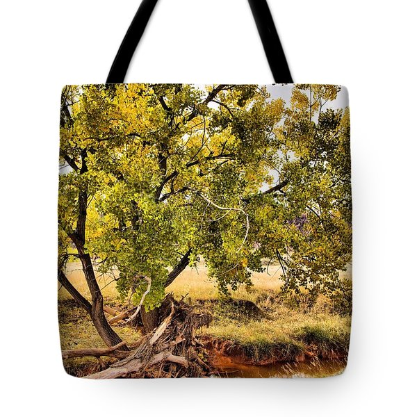 Fall Color Tote Bag
