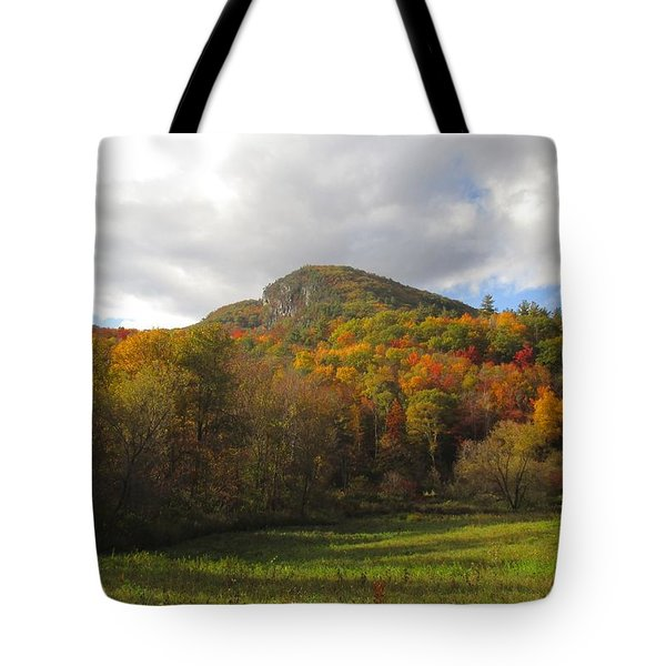 Fall Color In Vermont Tote Bag