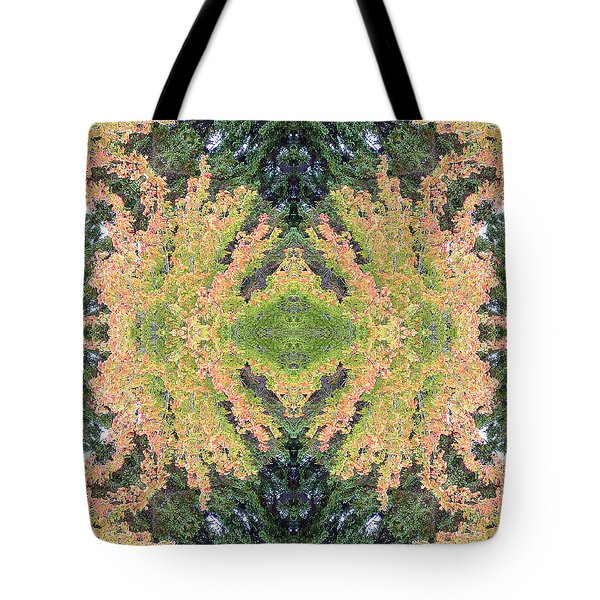 Fall Color Kaleidoscope Tote Bag by Bill Barber