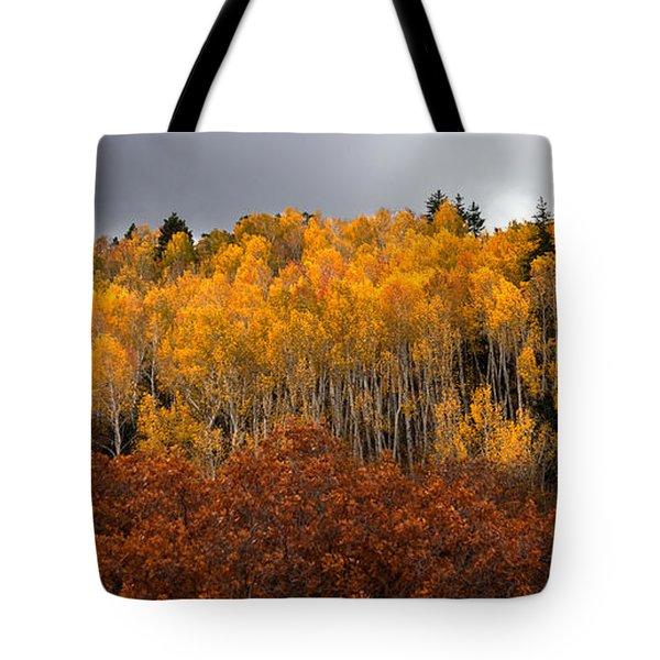 Fall Color On The Manti La Sal Mountains Tote Bag