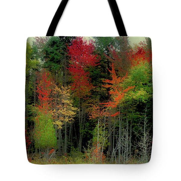 Tote Bag featuring the photograph Fall Color Panorama by David Patterson