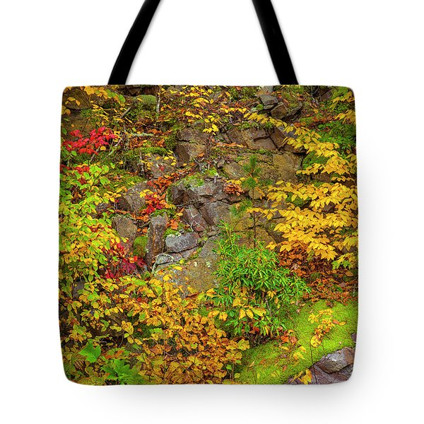 Fall Color Patchwork Tote Bag by David Cote