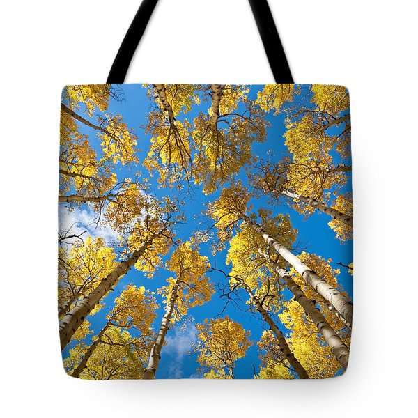 Fall Colored Aspens In The Inner Basin Tote Bag