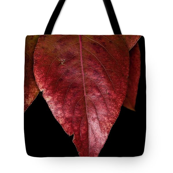 Tote Bag featuring the photograph Fall Colors 3 by James Sage