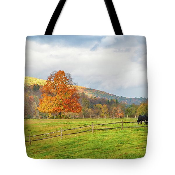 Tote Bag featuring the photograph Fall Colors After The Storm. by Jeff Folger