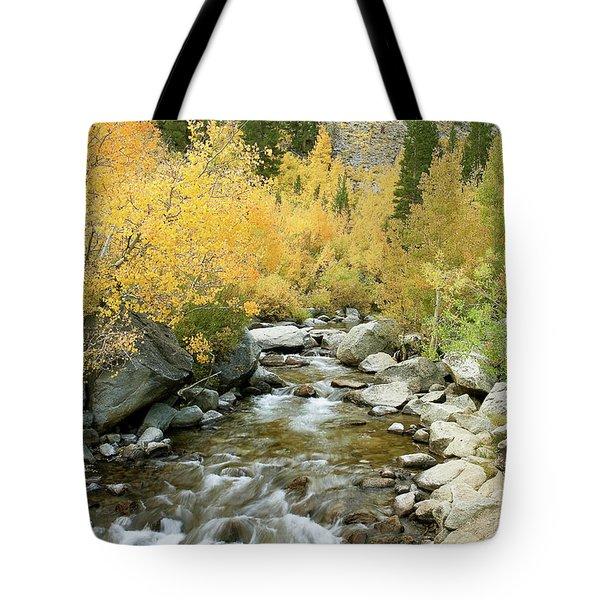 Fall Colors And Rushing Stream - Eastern Sierra California Tote Bag by Ram Vasudev