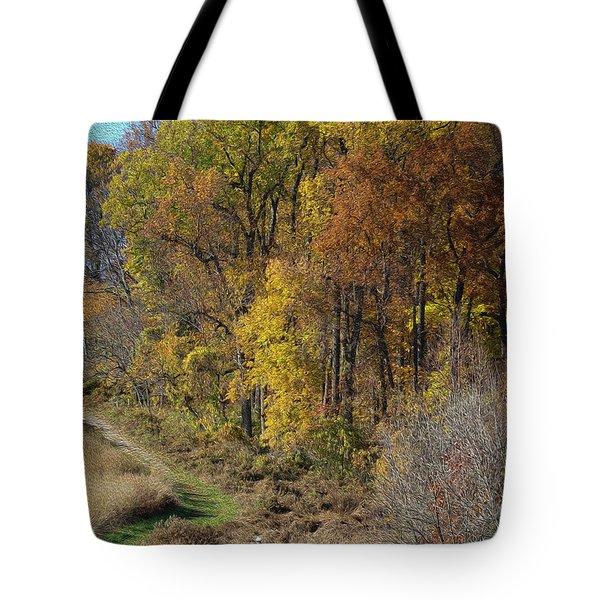 Fall Colors As Oil Tote Bag