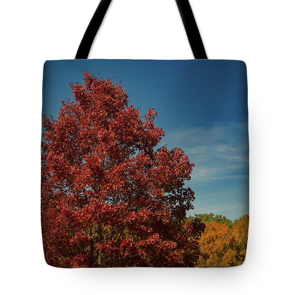 Tote Bag featuring the photograph Fall Colors, Ashville, Nc by Richard Goldman