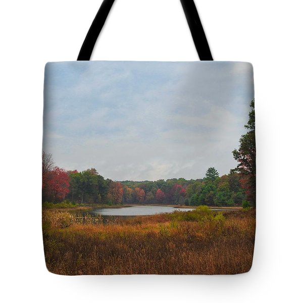 Fall Colors At Gladwin 4459 Tote Bag