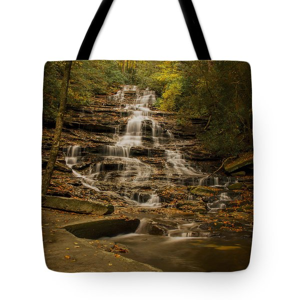 Tote Bag featuring the photograph Fall Colors At Minnehaha Falls by Barbara Bowen
