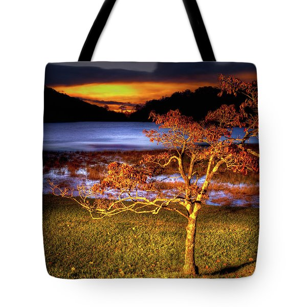 Tote Bag featuring the photograph Fall Colors At Sunrise In Otter Blue Ridge by Dan Carmichael