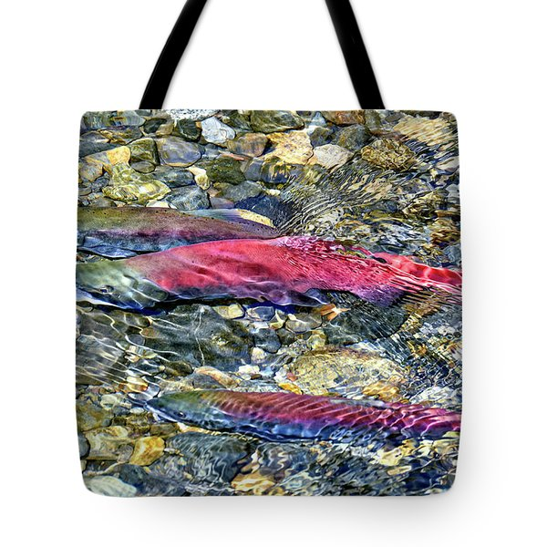 Tote Bag featuring the photograph Fall Colors by David Lawson