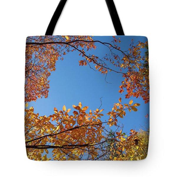 Fall Colors In Hoyt Arboretum Tote Bag