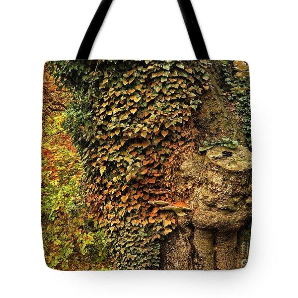 Fall Colors In Nature Tote Bag
