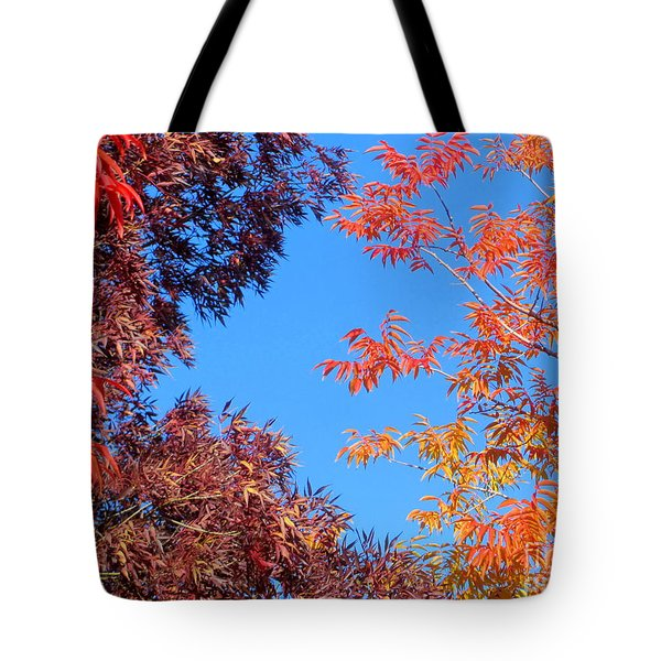 Tote Bag featuring the photograph Fall Colors by Irina Hays