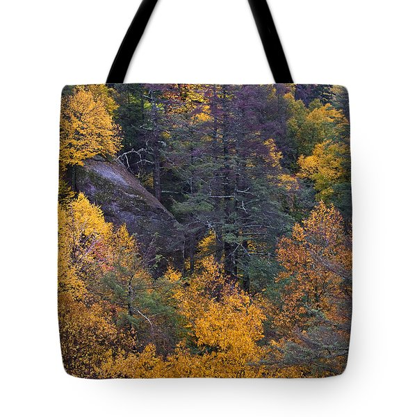 Tote Bag featuring the photograph Fall Colors by Ken Barrett