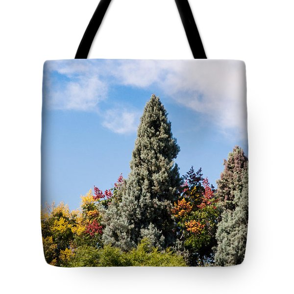 Fall Colors Tote Bag By Kimberly Valentine