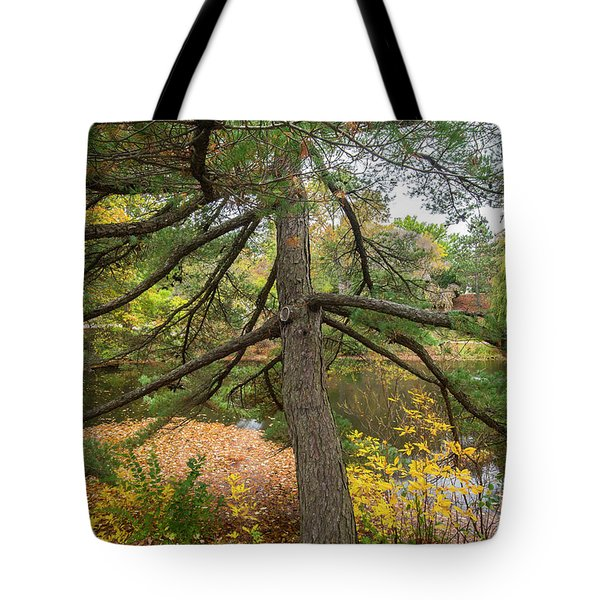Tote Bag featuring the photograph Fall Colors by Michael D Miller
