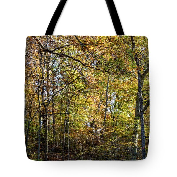 Fall Colors Of Rock Creek Park Tote Bag