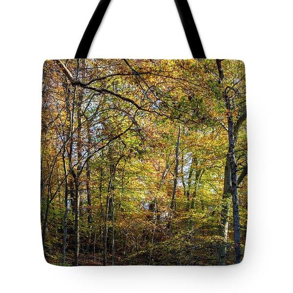 Fall Colors Of Rock Creek Park Tote Bag