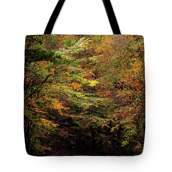 Tote Bag featuring the photograph Fall Colors On The Trail by Shelby Young