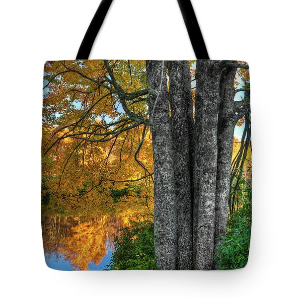 Tote Bag featuring the photograph Fall Colors Reflecting In A Blue Ridge Lake by Dan Carmichael