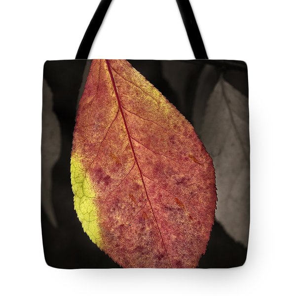 Fall Elder Leaf Tote Bag
