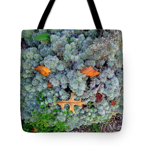 Fall Face Tote Bag