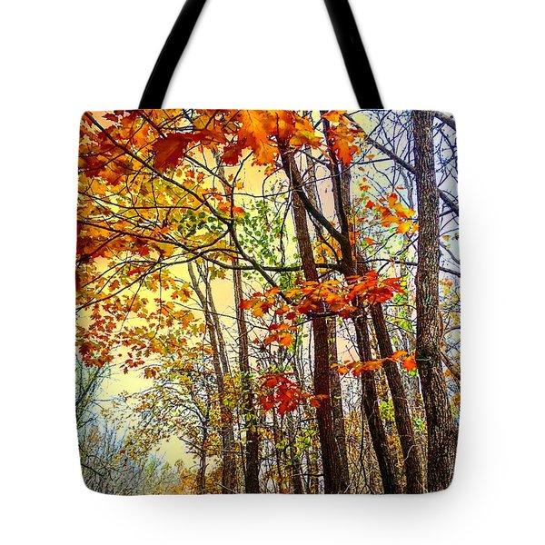 Fall Fantasy Tote Bag