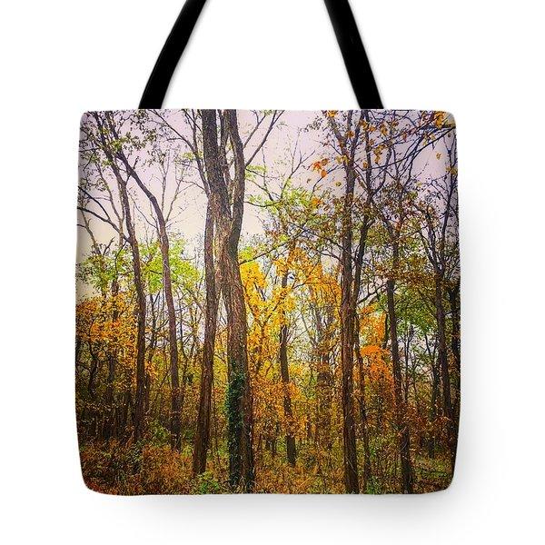 Fall Farewell Tote Bag