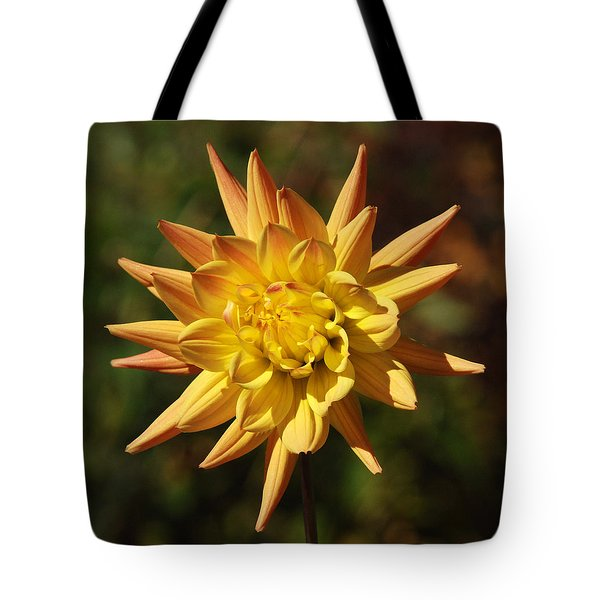 Tote Bag featuring the photograph Fall Flower by Richard Bryce and Family