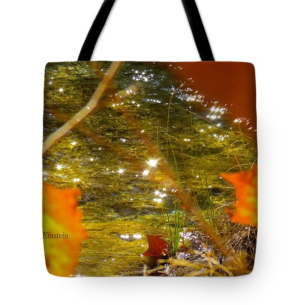 Fall Flyer Tote Bag by David Norman