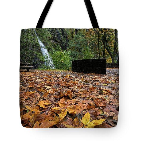 Fall Foliage At Horsetail Falls Tote Bag by David Gn
