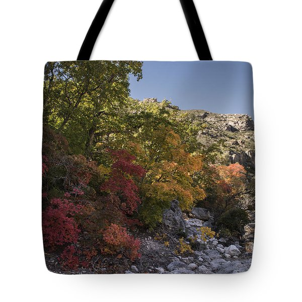 Tote Bag featuring the photograph Fall Foliage In The Guadalupes by Melany Sarafis