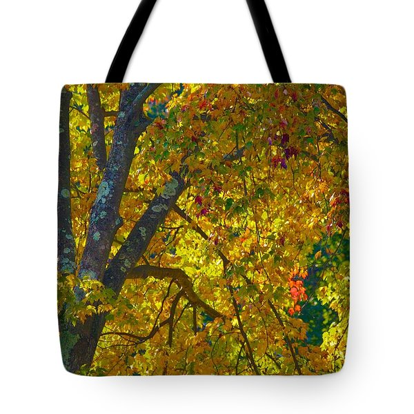 Tote Bag featuring the photograph Fall Glory On Route 53 by Polly Castor