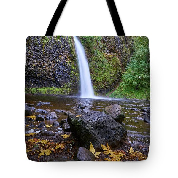 Fall Gorge Tote Bag by Jonathan Davison