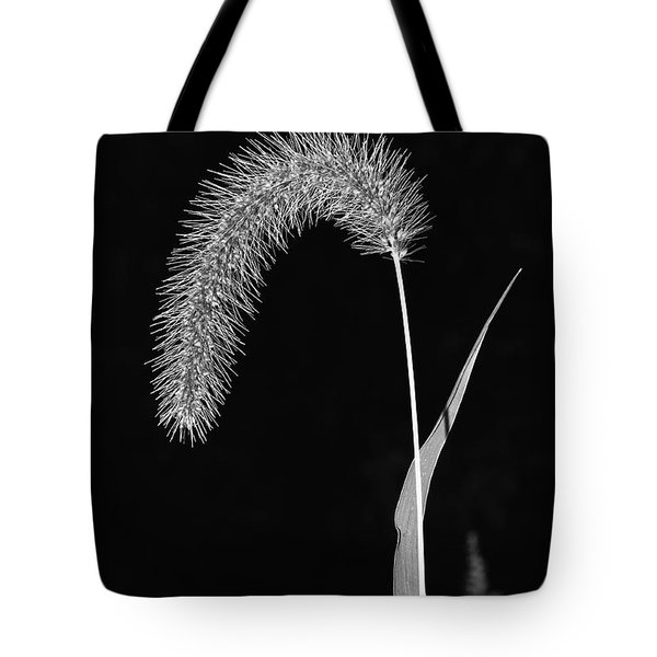 Fall Grass 1 Tote Bag