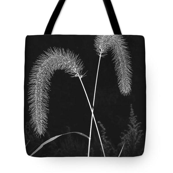 Fall Grass 2 Tote Bag