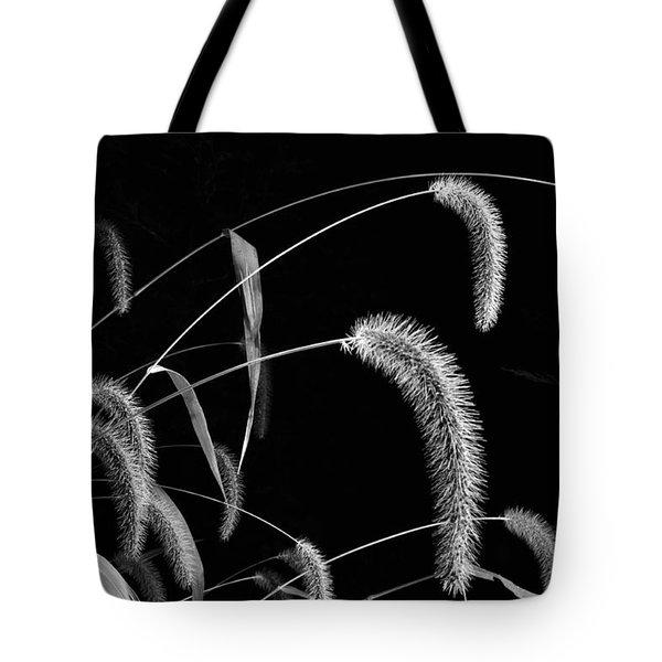 Fall Grass 3 Tote Bag