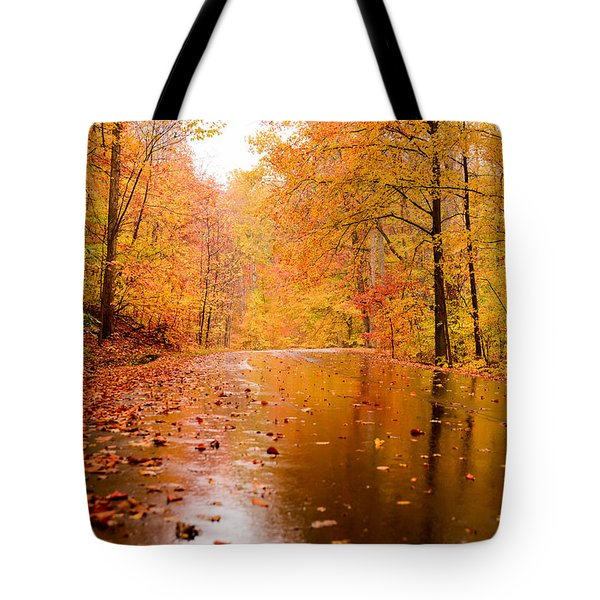 Tote Bag featuring the photograph Fall Holidays by Mary Timman